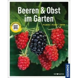 Beeren und Obst im Garten