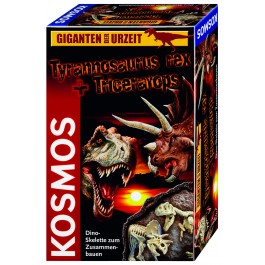 T-rex & Triceratops - Skelette