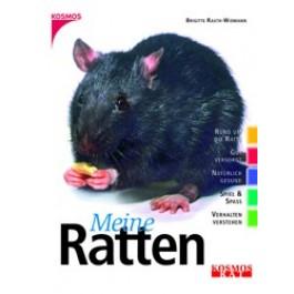Meine Ratten