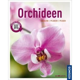 Orchideen (Mein Garten)