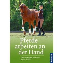Pferde arbeiten an der Hand
