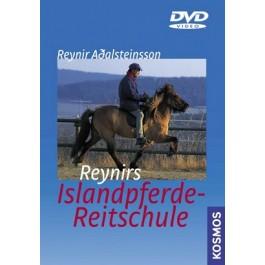 Reynirs Islandpferde-Reitschule