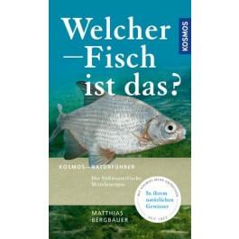 Welcher Fisch ist das