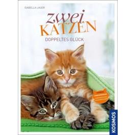 Zwei Katzen Doppeltes Glück