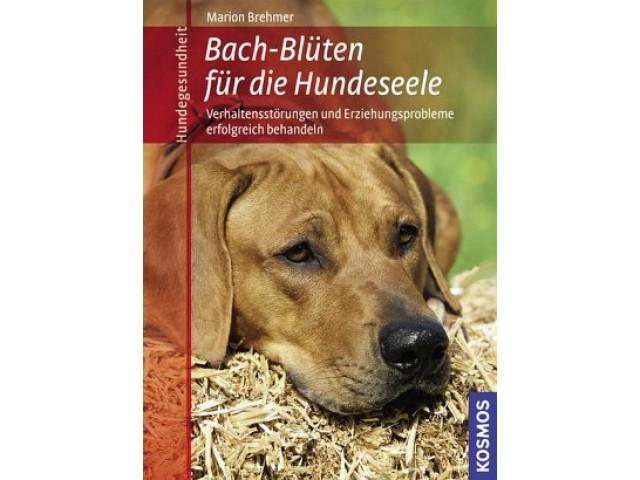 Bach-Blüten für die Hundeseele