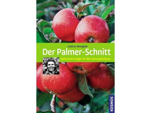 Der Palmer-Schnitt