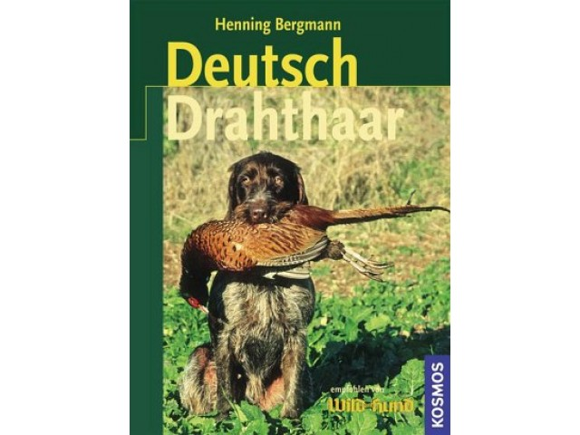Deutsch-Drahthaar