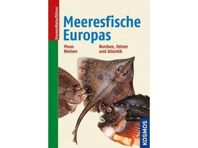 Die Meeresfische Europas