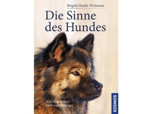 Die Sinne des Hundes