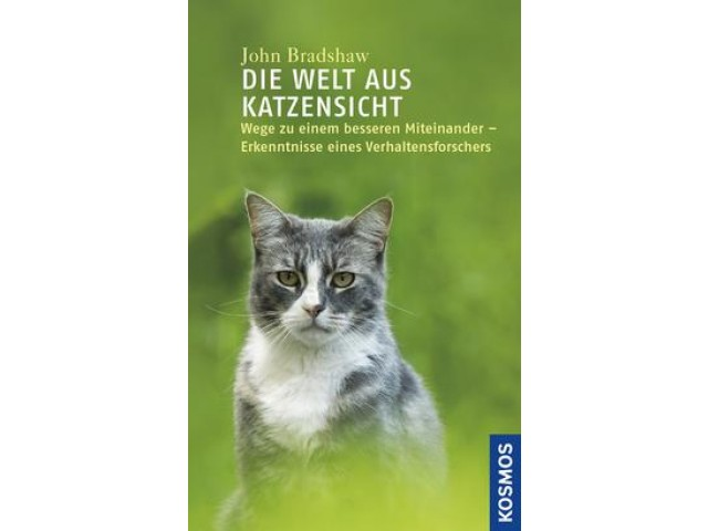 Die Welt aus Katzensicht