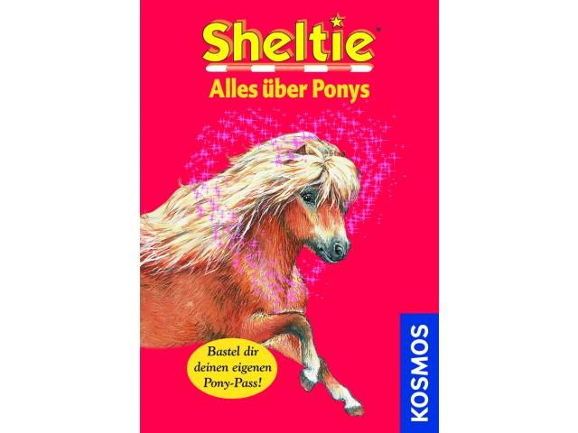 Sheltie Alles über Ponys
