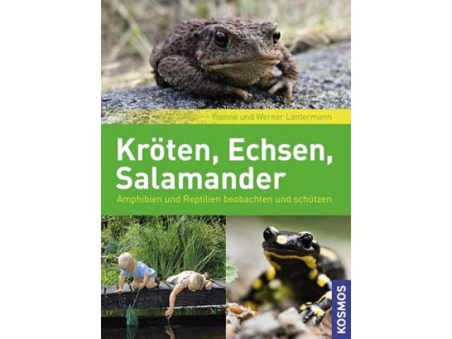 Kröten, Echsen, Salamander