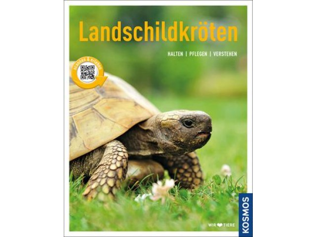 Landschildkröten