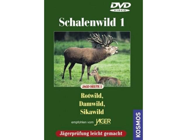 Schalenwild 1