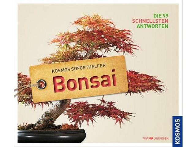 Soforthelfer Bonsai