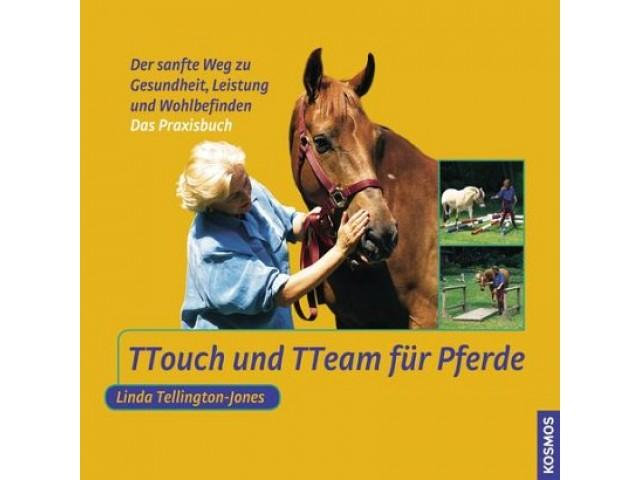 TTouch und TTeam für Pferde