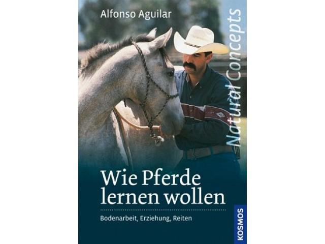 Wie Pferde lernen wollen