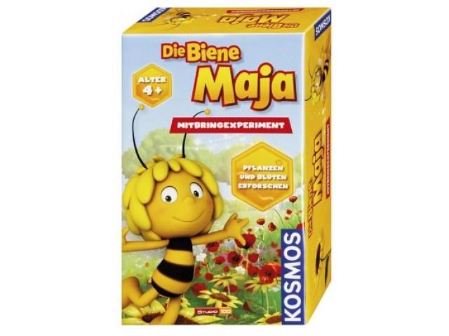 """Die Biene Maja"" Mitbringexperiment"