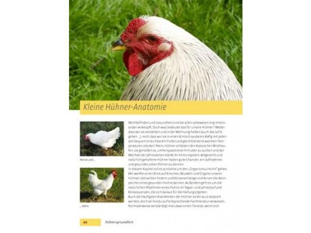 Bild (3): Hühner halten