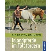 Beste Übungen - Islandpferdereiten