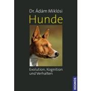 Hunde - Evolution, Kognition und Verhalten