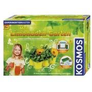 Mein Limonaden-Garten