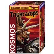 Triceratops - Ausgrabung