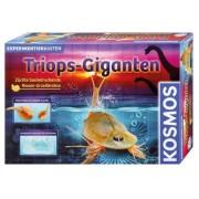 Triops-Giganten