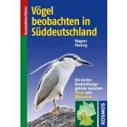 Vögel beobachten in Süddeutschland