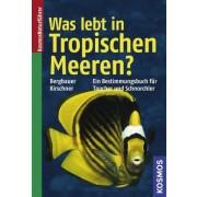 Was lebt in tropischen Meeren?