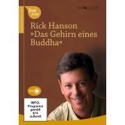 Das Gehirn eines Buddha (DVD)